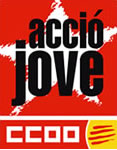 www.ccoo.cat/acciojove