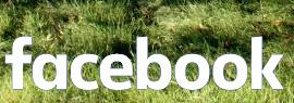 Facebook del Departament de Sostenibilitat CCOO de Catalunya