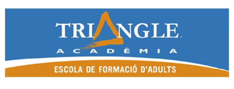 Triangle Academia Logo Web