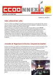 revistes ccoonnexiodigital 33