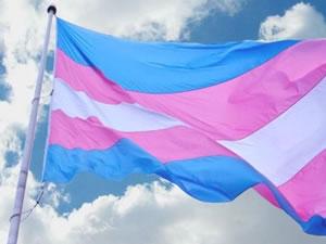 bandera transgenere