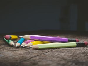 llapissos ensenyament educacio