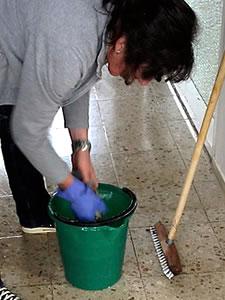 treballadora domestica neteja