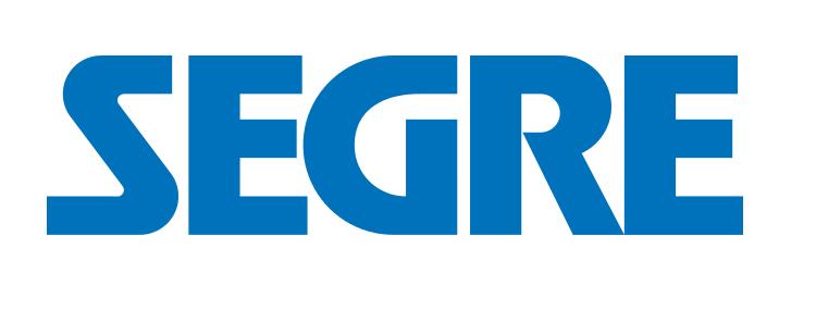 Logo Diari Segre Web