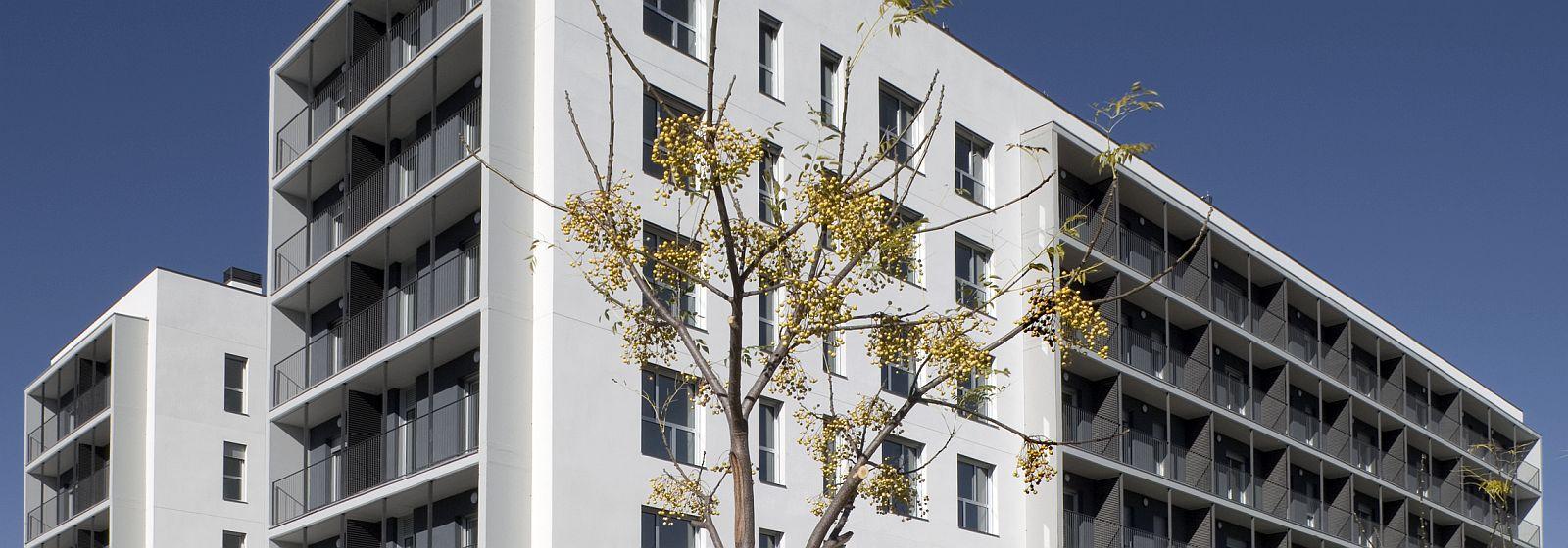 Habitatge Social Barcelona Peticio Mesures Dret